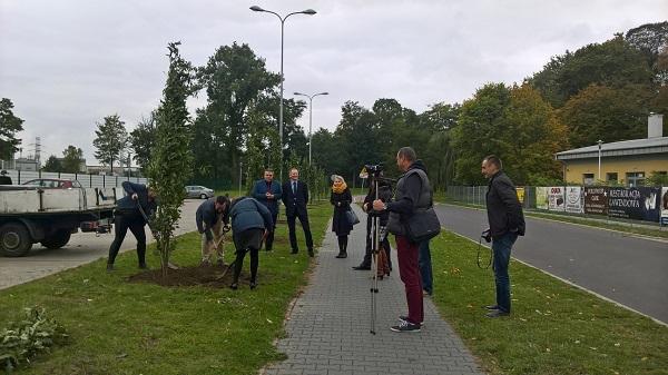 Pracownicy WINIARY zasadzili nowe drzewa w Kaliszu_s